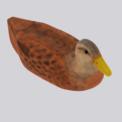 duckf